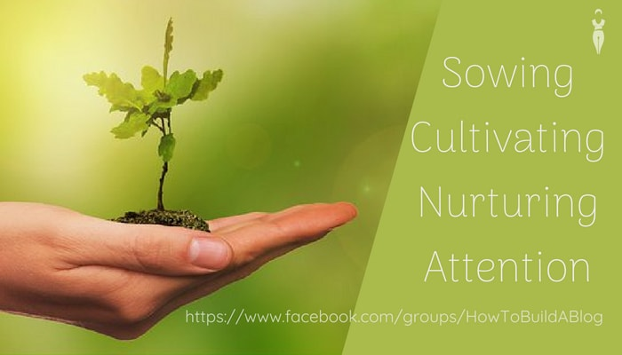 Attention Sowing Cultivating Nurturing